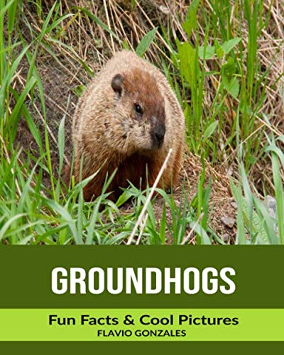 (Groundhogs: Fun Facts & Cool Pictures)