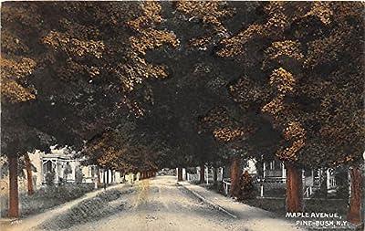 Pine Bush, New York Postcard