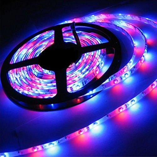 econoLED LED Flexible Strip Lights,Strip Lights, 16.4ft 300leds 5m Waterproof Adhesive Light Strips RGB Color Changing SMD 3528 Ribbon Kit with 44key Remote with Power Supply by econoLED (Image #2)