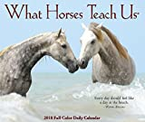 What Horses Teach Us 2018 Box Calendar