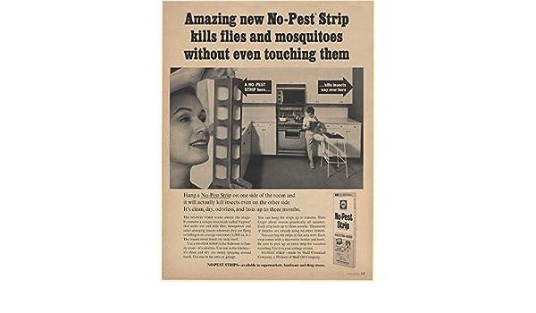 Shell No Pest Strip box Shell Box and Childhood t