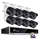 Loocam 720p Home Security Camera System, 8CH DVR Recorder with 1TB HDD and 8X 1.0MP(1280×720) Indoor Outdoor CCTV Surveillance Cameras,150ft Night Vision,Motion Detection & Email Alert, Remote Access For Sale