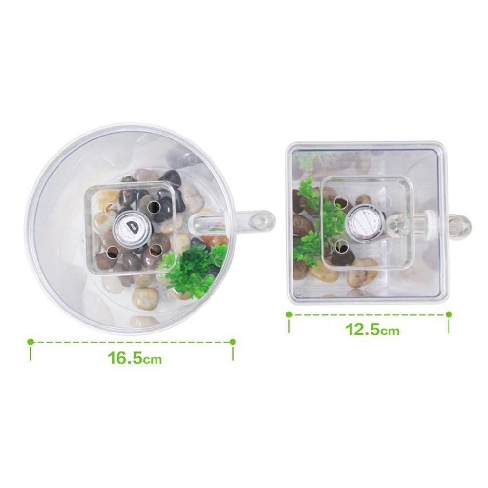 FairOnly - Pecera de plástico autolimpiable para Acuario, para Oficina, decoración del hogar: Amazon.es: Hogar