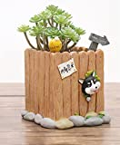 American Creative Corgi, Pastoral Dogs, Husky. Cute Animal Succulent Flower / Potted Flower Gift Personality Micro Landscape Decoration
