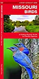 Missouri Birds: A Folding Pocket Guide to Familiar Species (Pocket Naturalist Guides)