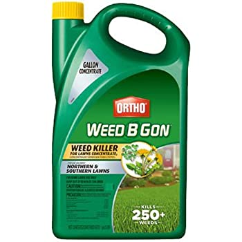 Amazon.com : Ortho Weed B Gon MAX Weed Killer for Lawns Plus ...