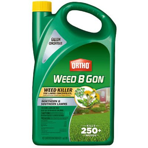 Ortho Weed B Gon Weed Killer for Lawns Concentrate, 1-Gallon (Best Weed Killer To Kill Creeping Charlie)