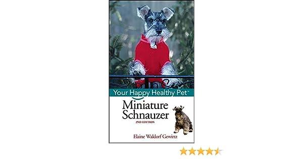Miniature Schnauzer FAQs