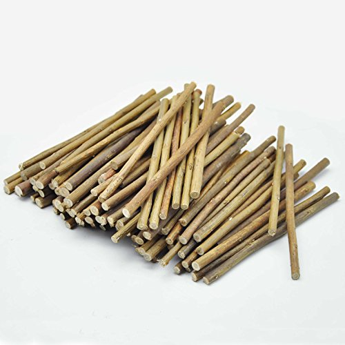 Niteangel Natural Chew Sticks for Chinchilla, Guinea Pigs, Hamsters, Rabbits, Parrots and Other Small Animals (110-120 Willow (Apple Chew Stick)
