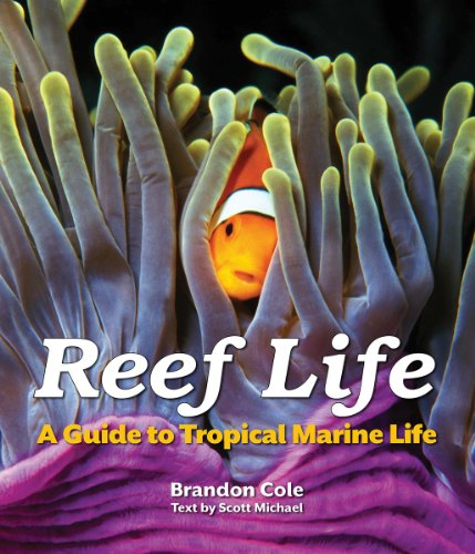 (Reef Life: A Guide to Tropical Marine Life)