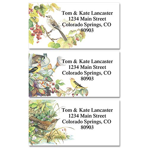 Songbirds Personalized Return Address Labels - Set of 144, Large, Self-Adhesive, Flat-Sheet Labels (6 Designs), By Colorful - Designs Labels 6