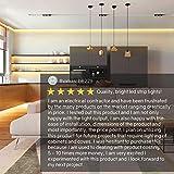 HitLights Warm White LED Light Strip, Premium High