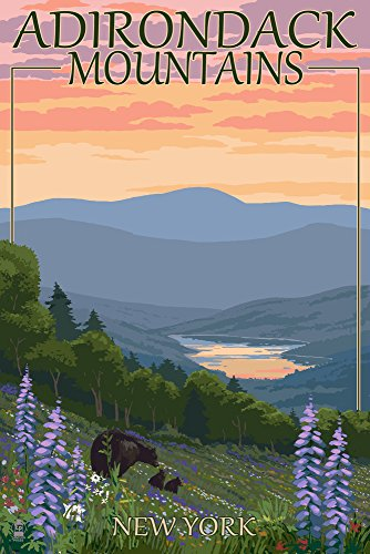 Adirondacks Mountains, New York State - Bears and Spring Flowers (12x18 Art Print, Wall Decor Travel Poster)