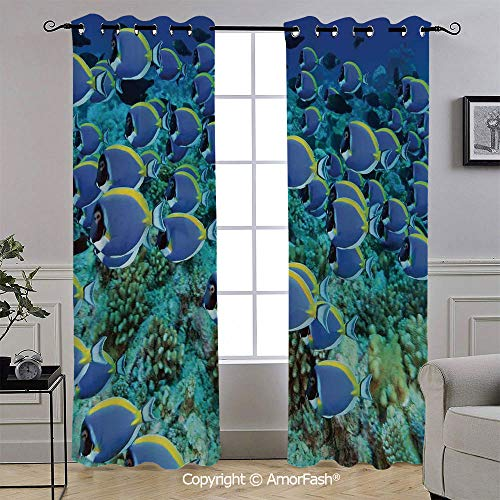 - AmorFash Ocean Decorative Curtains Room Darkening Thermal Insulated Curtains,Grommet Top,52x96 Inch,School of Powder Blue Tang Fishes in The Coral Reef Maldives Deep Seas