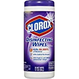 Clorox Disinfecting Wipes Canister, 35 Count (Pack of 12)