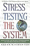 img - for Roger Kubarych: Stress Testing the System : Simulating the Global Consequences of the Next Financial Crisis (Paperback); 2001 Edition book / textbook / text book
