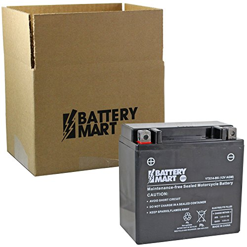(YTX14-BS Equivalent AGM Maintenance Free Battery)
