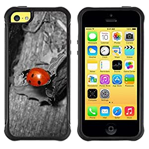 LASTONE PHONE CASE / Suave Silicona Caso Carcasa de Caucho Funda para Apple Iphone 5C / Ladybug Gray Red Cute Bug Macro Close-Up