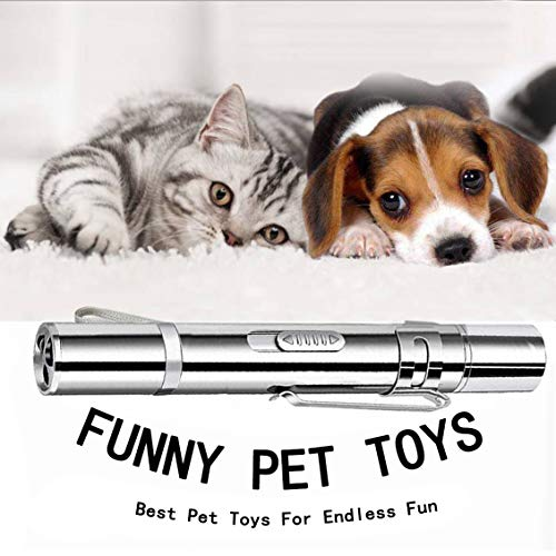 DMY Cat Toys Interactive-7 in 1 Function Chaser Toy-USB Rechargeable-Multi Pattern Funny & Mini Flashlight Interactive LED Light Entertain Training Tool for pet 8