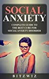 Social Anxiety: Complete Guide To The Best Cure For Social Anxiety Disorder( Ultimate Cure For Social Anxiety & Shyness, Break Free From Panic) (Social Anxiety Ultimate Guide Book 1)