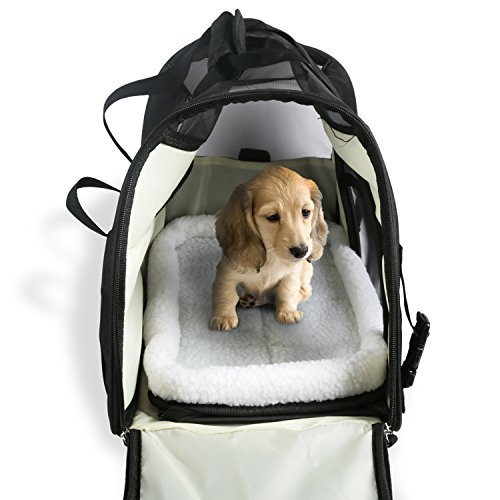 GPCT [Airline Approved] Pet Dog Cat Puppy Kitten Travel Portable Bag Home Carrier. [Comfortable] Soft Bed, Easy to Carry, Adjustable Strap, Washable, Lightweight, Safety Belt Buckle, Extra Spacious!