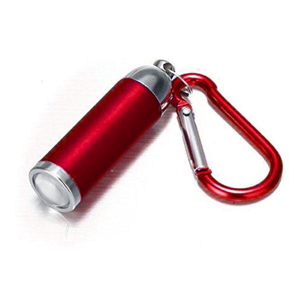 Ultra Bright Mini LED Camping Flashlight Torch Keyring Portable Keychain (Silver, 2.24*0.59')