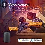 Taloya Smart Ceiling Light Flush Mount LED