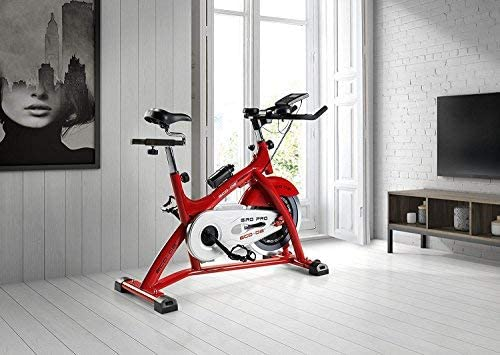 ECO-DE Bicicleta de Spinning Giro Pro. Uso semiprofesional con ...