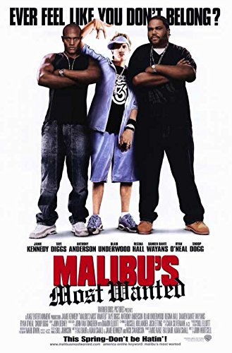 Malibu's Most Wanted POSTER (11