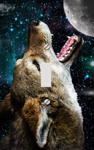 - Coyote Moon Switchplate - Switch Plate Cover