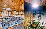 Solar Pendant Light - Indoor Barn Lights Led Shed