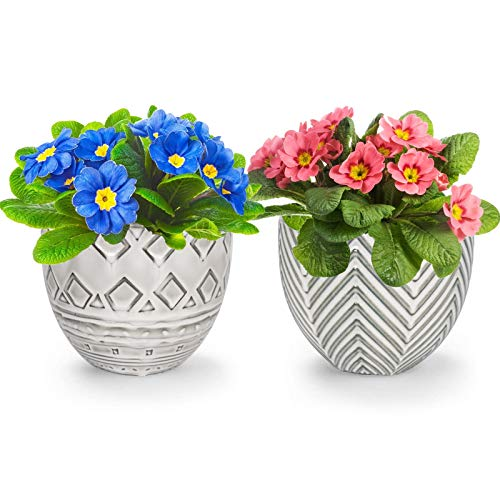 KORAM 5.5 Inch Ceramic Indoor Flower Plant Pots, 2 PCS Decorative Planter Flower Pot for Succulent Plant, Flowers, Herbs, Cactus with Drain Hole, Planters Indoor Decoration Set(Plants Not Included)
