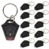 LUMAND 10 Pack LED Flashlight Keychain, Super Bright Mini Flashlights Key Ring Torch Light, Black