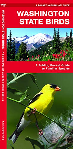 Washington State Birds: A Folding Pocket Guide to Familiar Species (Wildlife and Nature Identification)