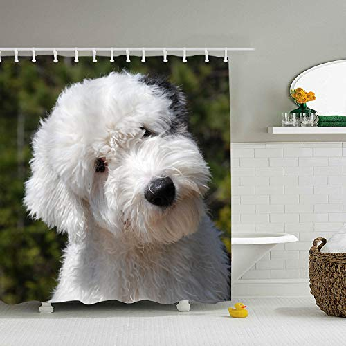 Mweet Old English Sheepdog Eco-Friendly Shower Curtain Water Repellent, Everyday Shower Curtain Liner Mildew-Free 71 × 78 inch -