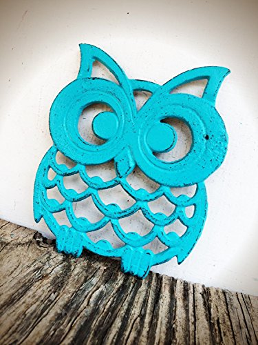 Cast Iron Owl Trivet - Turquoise Table Decor - Rustic Kitchen Accessories - Large Hot Pad with Rubber Feet