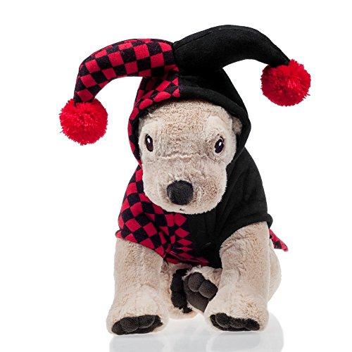 He&Ha Pet Clothes Cosplay apparels dress for Small Medium Dog and Cat (Clown, S)