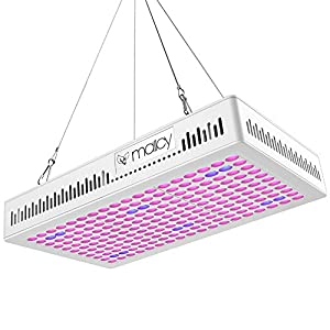 Grow Light 300w, MAIICY Advanced Full Spectrum 300W Led Plant Light Hanging Lamp with UV IR for Greenhouse Hydroponic Indoor Plants Growing Veg and Flower (300W) (300W)