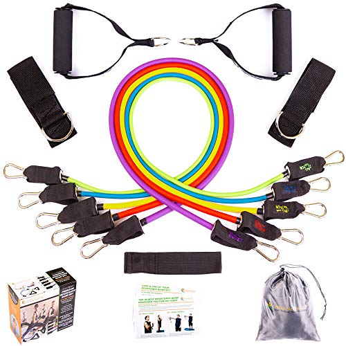 Resistance Bands for Legs and Butt - Heavy Duty Exercise Bands with Handles, Door Anchor and Ankle Straps - Up to 75 Lbs - Physical Therapy Bands, Stretch Bands for Arms, Shoulders, Home Gym Workout (Best Resistance Band Exercises For Weight Loss)