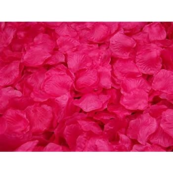 Amazon 1000 fuchsia hot pink silk rose petals wedding flower crazycity new arrival 2000pcs colorful silk rose petals artificial flower bridal shower favors for wedding party supplies decoration dark hot pink mightylinksfo