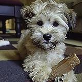 Himalayan Dog Chews 100% Natural, Small, 3.3 Oz., 3