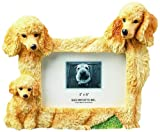 Apricot Poodle  Picture Frame Holds Your Favorite 3 x 5 Inch Photo,  A Hand Painted Realistic Looking Apricot Poodle  Family Surrounding  Your Photo. This Beautifully Crafted Frame is A Unique Accent To Any Home or Office. The Apricot Poodle  Picture Fram