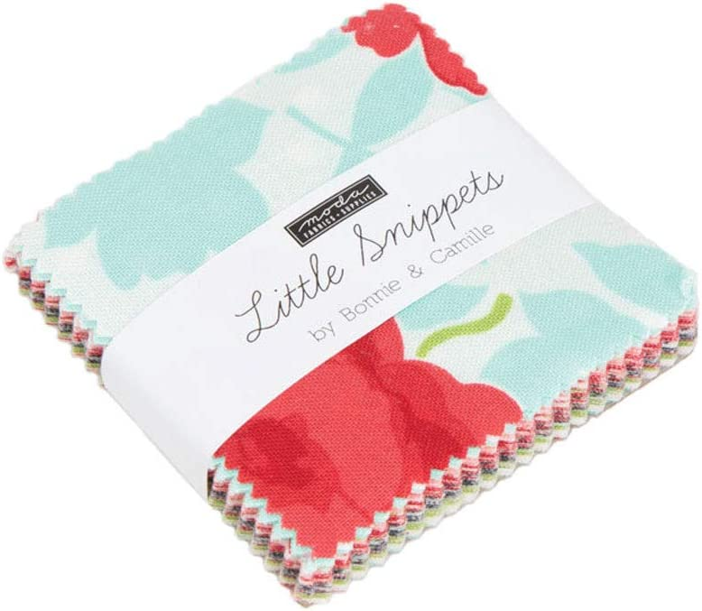 Little Snippets Mini Charm Pack by Bonnie /& Camille; 42-2.5 Inch Precut Fabric Quilt Squares