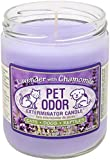 Pet Odor Exterminator Jar Candle - Lavender with Chamomile