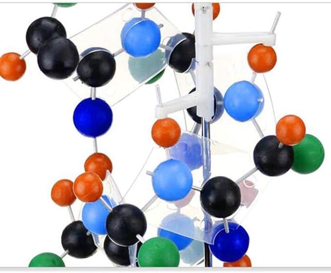 La proteína modelo de estructura secundaria de proteínas ...