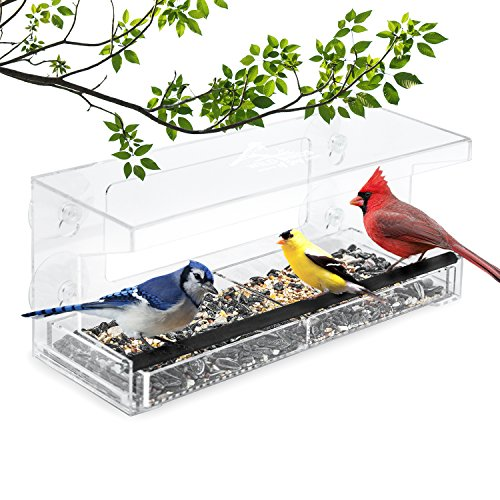 ndow Bird Feeder with 4 Super Strong Suction Cups & Sliding Seed Tray, Large, Clear Acrylic, Easy Clean, Outdoor Bird Feeders, Outside View Up Close of Finch, Cardinal and Blue Jay ()