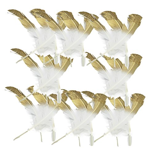 MonkeyJack 24 Piece Dyed Natural Turkey Feather for Millinery Costume DIY Art Crafts Home Xmas Decoration 25-32cm (Turkey Costume Diy)