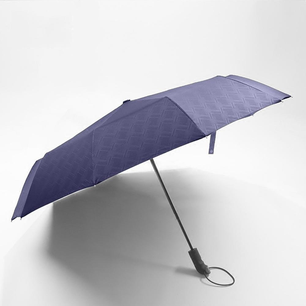 biutefang傘二重傘大型ストレート傘風ブラック傘long-handled傘屋外傘ゴルフ傘ビジネス傘103 x 86 cm ブルー 6933322204747  ブルー B07B3T59QM