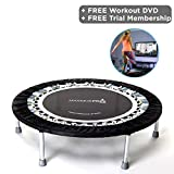 High quality Professional Gym Rebounder - Used in 1000's of Gyms, and Physio Clinics World Wide! Robust and Very Low Impact. Buy the Best Rebounder because Your Body Deserves It, and you Need To Get Results