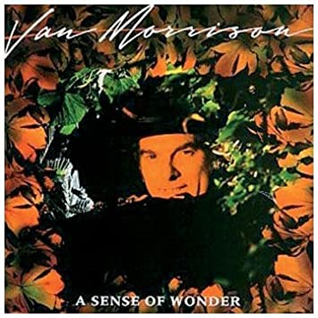 Van Morrison A Sense Of Wonder Lyrics